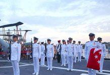 navy50vivo