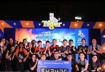 Tiger Street Food Festival 2018