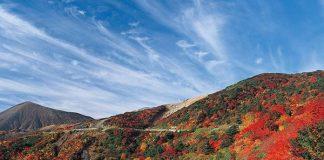 Tohoku Road Trip Guide