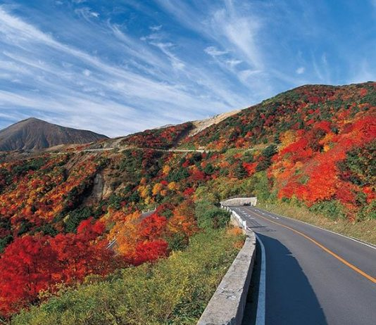 Tohoku Road Trip Guide