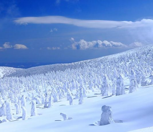Magical Snowy Charms Of Winter Tohoku