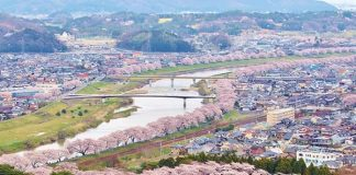 Best Cherry Blossom Spots To Welcome Spring In Tohoku